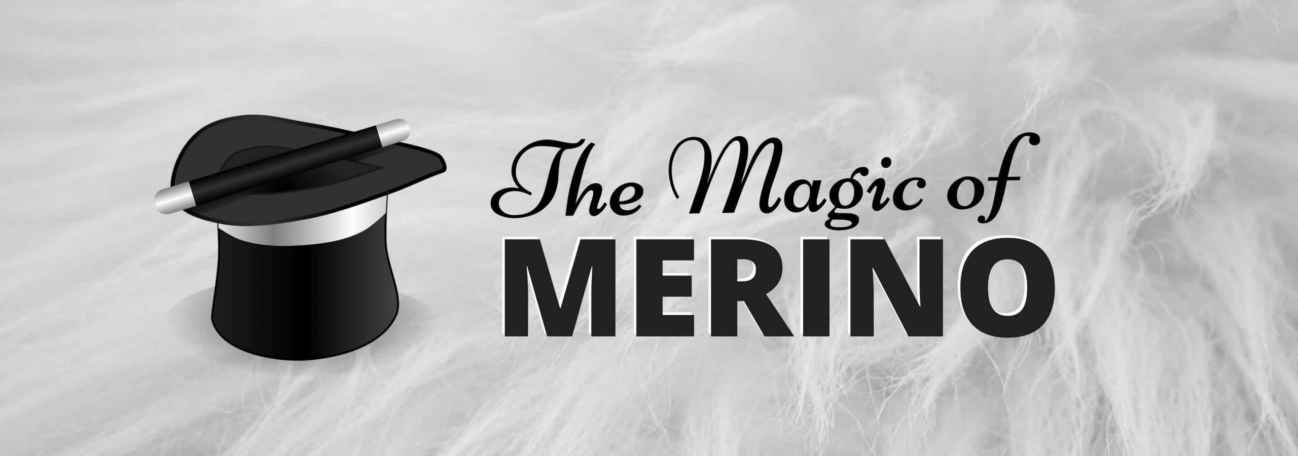 The Magic Of Our Merino