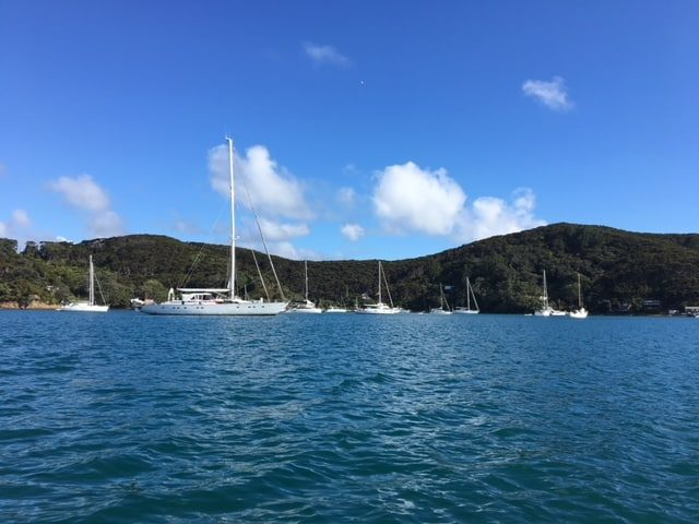 Jan Turley Travels To Kawau Island